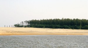 Talsari