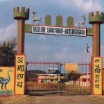 Narsinghgarh Wildlife Sanctuary